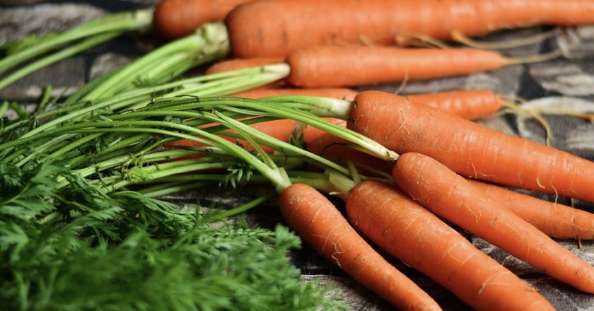 Western Australian Food Innovation Precinct